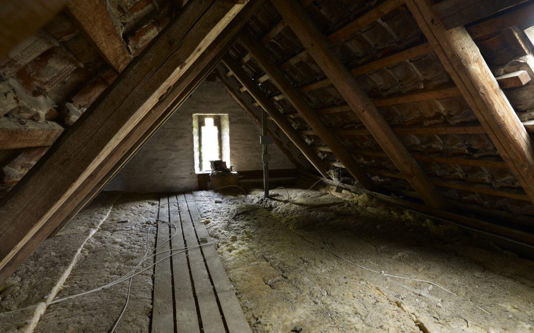 Zašto svi želimo više prirodnog svjetla u domu